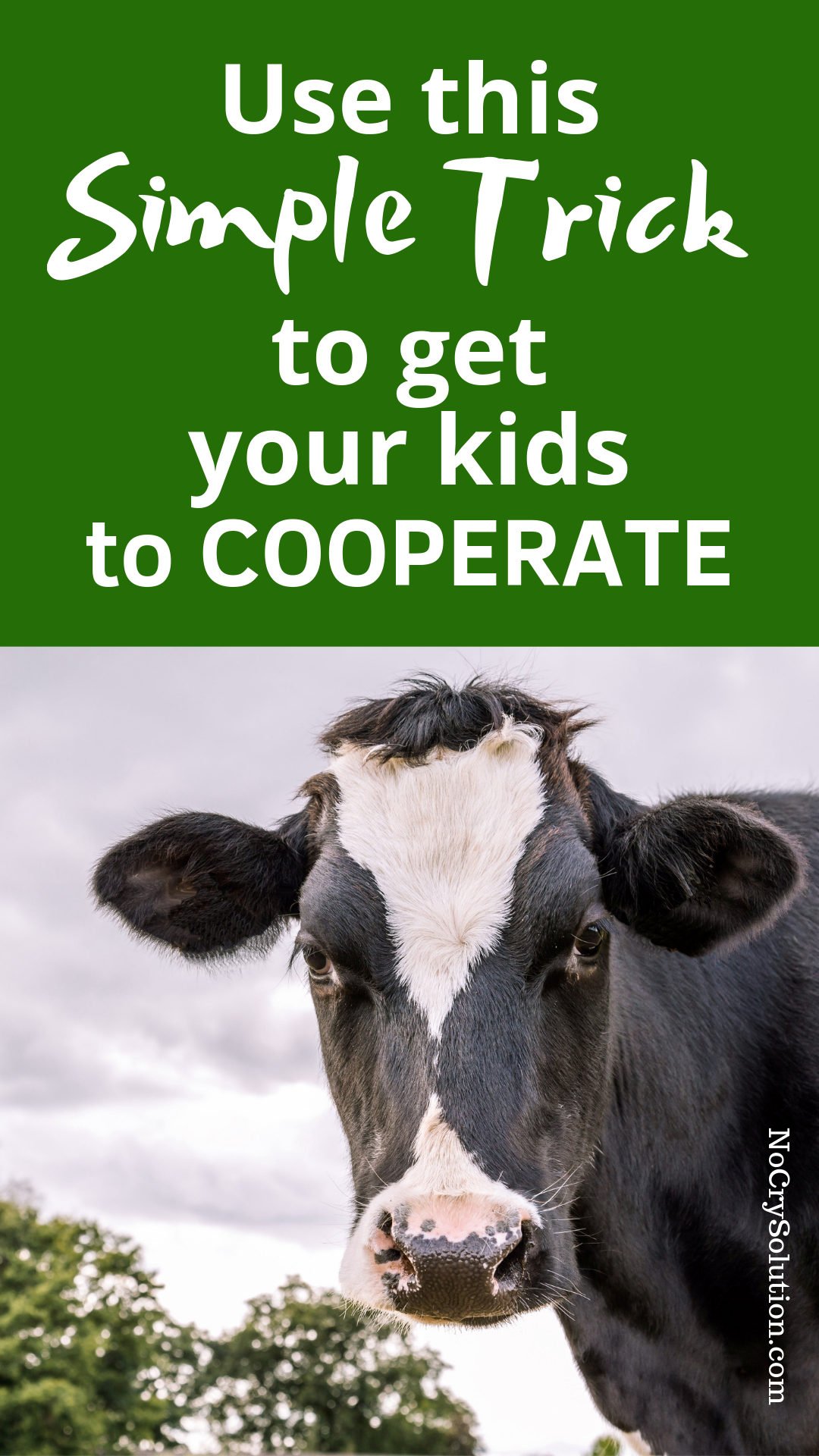 kids and cooperation