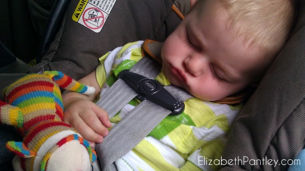 prevent-car-naps-elizabethpantley-peter-6mo