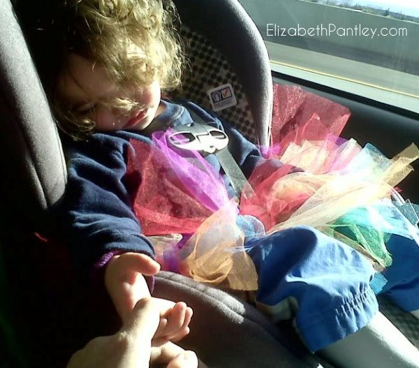 prevent-car-naps-elizabethpantley-violet