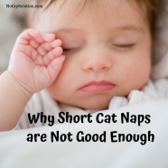 Why Short Cat Naps Are Not Good Enough