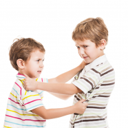 Aggressive Behavior in Children: Hitting, Biting, Kicking and Hair Pulling